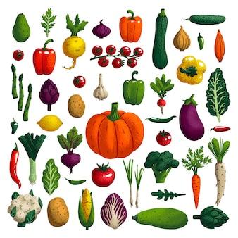 Gemüse eingestellt