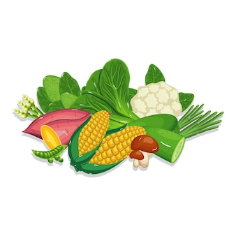 Gemüse-frische gesunde natürliche nahrung, die bestandteil kocht