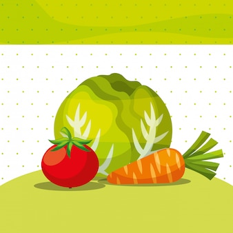 Gemüse frische organische gesunde salatkarotten-tomate