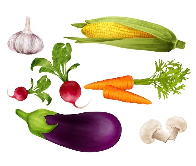 Gemüse realistisch gesetzt
