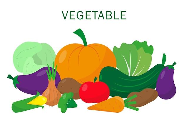 Gemüse-set auf weißem hintergrund vektor-illustration