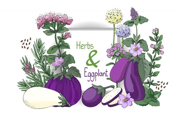 Gemüsegarnitur. grüner und lila basilikum und auberginen.