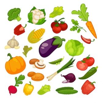 Gemüseikonen eingestellt