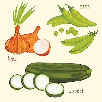 Gemüsemischung vektor