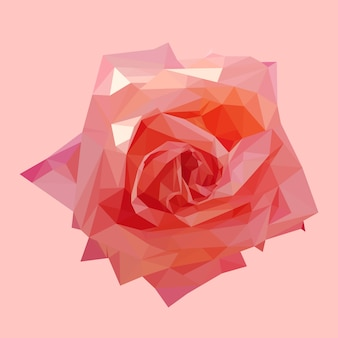 Geometrische polygonale korallenrote rosarose, lokalisierte polygonvektor-blumenillustration