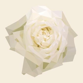 Geometrische polygonale weiße rose