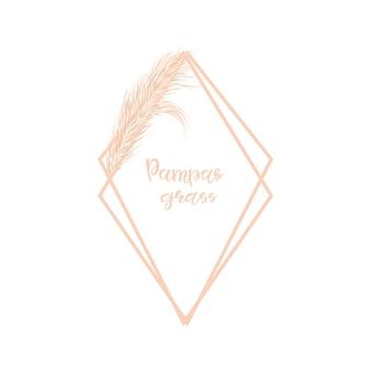 Geometrischer rahmen des trockenen pampasgrases auf einem weißen hintergrund. dekor von einladungen und postkarten.