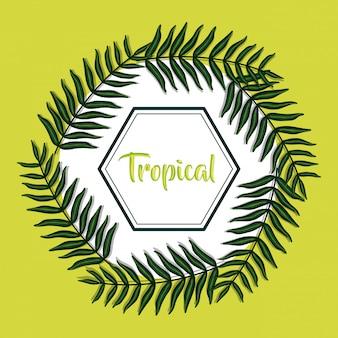 Geometrischer rahmen mit tropischen blättern