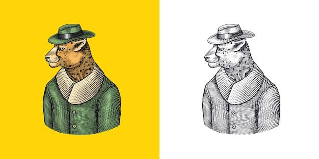 Gepard-charakter-guepard im mantel modischer viktorianischer gentleman in einer von hand gezeichneten jacke