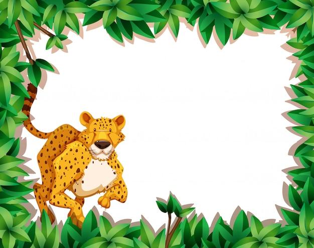 Gepard in der naturszene