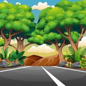 Gerade asphaltierte straße mit waldlandschaft