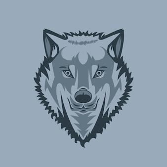 Gerade schauender weißer wolf