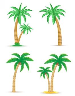 Gesetzte vektorillustration des tropischen baums der palme