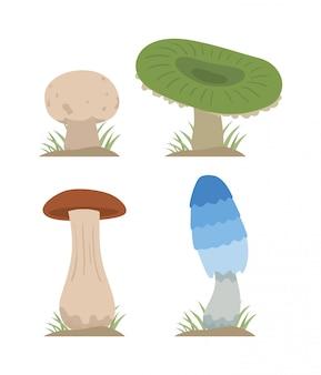 Gesetzte verschiedene arten der pilzvektor-illustration lokalisiert