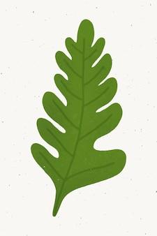 Gestaltungselement aus grünem eichenblatt