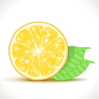 Gestylte orangenscheibe isoliert