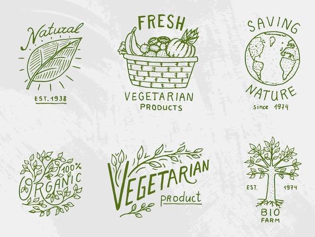Gesunde bio-lebensmittel-logos gesetzt oder etiketten und elemente für vegetarische und landwirtschaftliche grüne natürliche gemüseprodukte, illustration. abzeichen gesundes leben. gravierte hand in alter skizze gezeichnet.