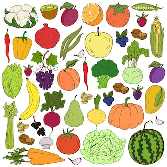 Gesunde handzeichnung buntes gemüse und obst