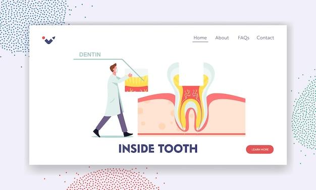 Gesunde zähne anatomie und innere struktur zielseitenvorlage. tiny zahnarzt männlichen arzt charakter setzen einen teil des dentins auf riesige zahnquerschnittsansicht infografiken. cartoon-vektor-illustration