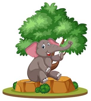 Getrennter elefant unter dem baum