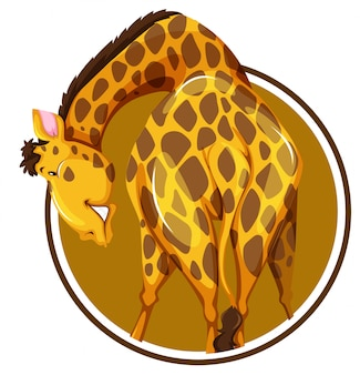 Getrennter giraffenaufkleber auf weißem hintergrund