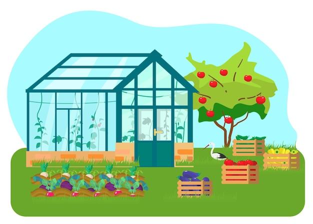 Gewächshaus mit verschiedenen pflanzen im flachen stil. glashaus mit tomaten und gurkenpflanzen. holzkisten mit gemüse. gemüsebeete. apfelbaum. storch.