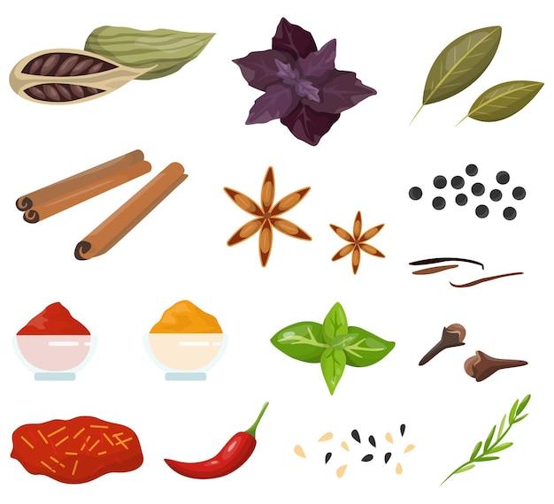 Gewürz zum kochen köstlicher lebensmittelsammlung. kräuter mit gutem geruch.