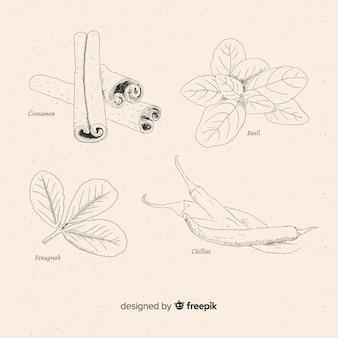 Gewürze und kräuter-sammlung
