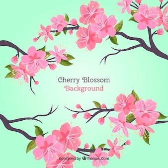 Gezeichnete art des kirschblüten backgroun in der hand