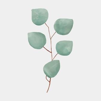 Gezeichnete botanische vektorillustration des grünen blattes hand