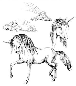 Gezeichnete illustration des einhorns, des einhornkopfes und der regenbogentinte hand