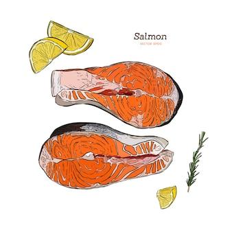 Gezeichnete illustration des vektorlachssteaks hand. rosmarin, zitrone, fischelemente
