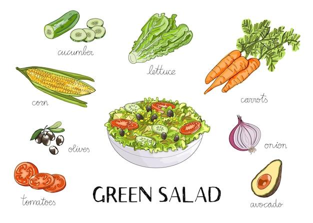 Gezeichnete illustration des vektors hand mit grünem salat