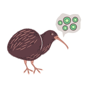 Gezeichnete illustrationen des vektors flache hand. netter kiwivogel.