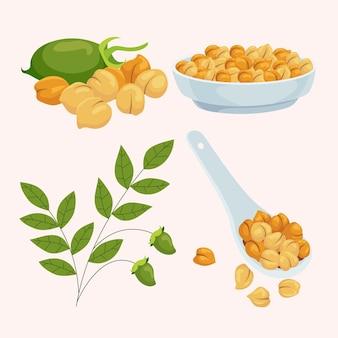 Gezeichnete kichererbsenbohnen mit pflanzenillustration