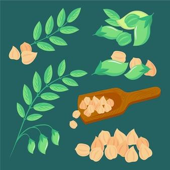Gezeichnete nahrhafte kichererbsenbohnen
