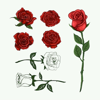 Gezeichnete sammlung der rosenblume hand