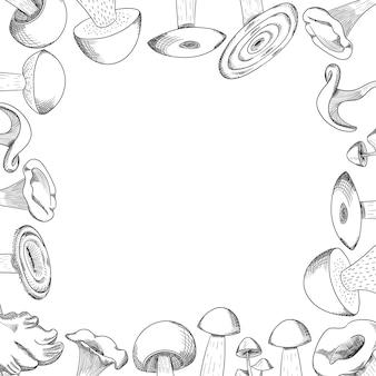 Gezeichneter skizzenvektorrahmen des pilzes hand. pilzshiitake, neuer rahmenhintergrund des biologischen lebensmittels