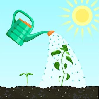 Gießkanne und grünpflanzen im boden.
