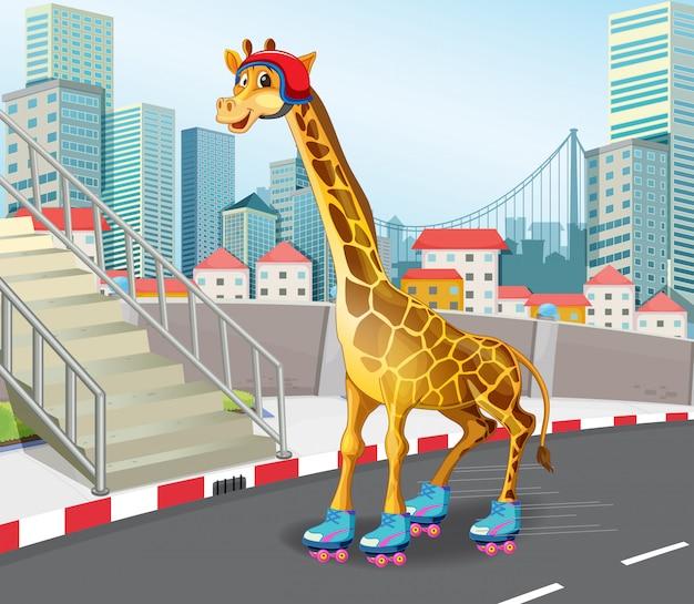 Giraffe, die rollschuh spielt
