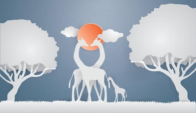 Giraffen zeigen liebe auf dem grauen gras mit hintergrund des blauen himmels im wald