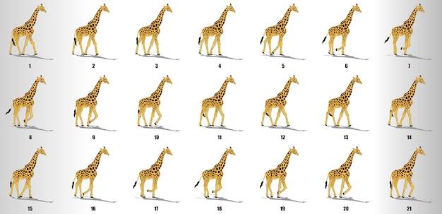 Giraffenwegzyklus animationssequenzvektor