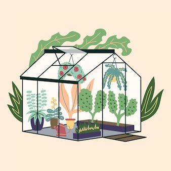 Glas moderne gewächshaus gartenpflanzen garten lockige efeu blumentöpfe winter glasgarten