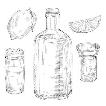 Glas und flasche tequila salzstreuer und limette handgezeichnete vektorskizze schraffurillustration