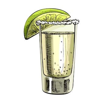 Glastequila mit limettenscheibe. vektorweinlese, die farbe ausbrütet. isoliert auf weißem hintergrund. handgezeichnetes design