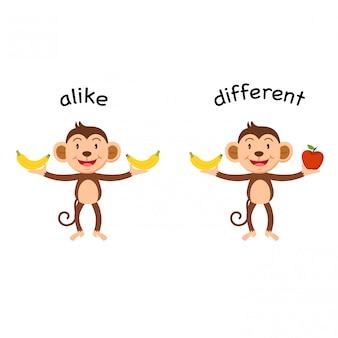 Gleich gegenüber und unterschiedliche vektorillustration