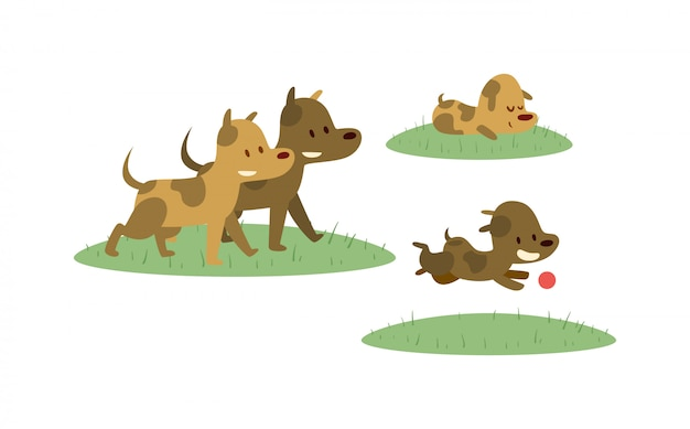Glückliche familie, die mit hund auf dem grünen gebiet geht