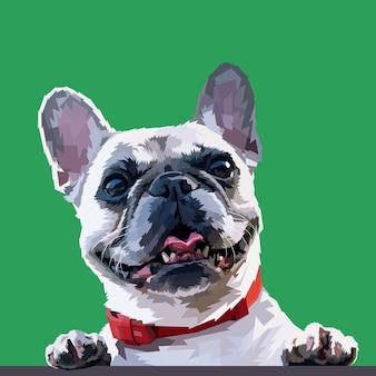 Glückliche französische bulldogge getrennt auf grünem hintergrund