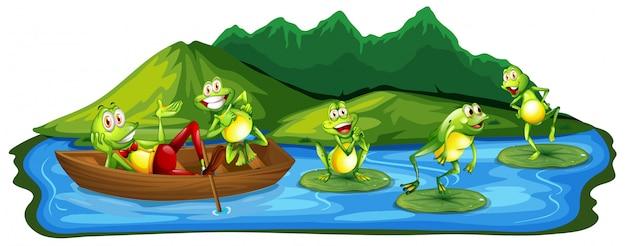 Glückliche frösche in dem teich