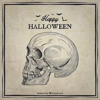 Glückliche halloween-karte mit einer hand gezeichnete schädel